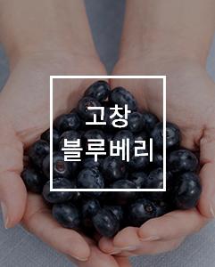 블루베리열매
